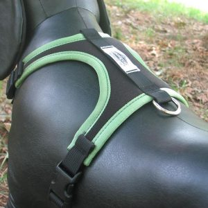 Adventure Harness Walking Harness