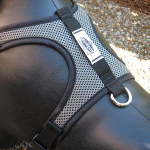 Adventure Mesh Harness
