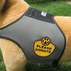 Please Donate Harness