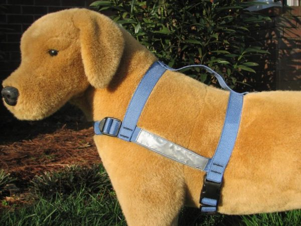 Reflective Harness